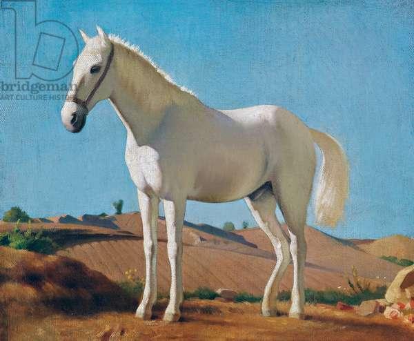 White Horse, 1860, by Raffaello Sernesi (1838-1866)