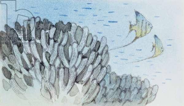 Reconstruction of Gyroporella sp, calcareous algae of Triassic Period, Drawing (photo)