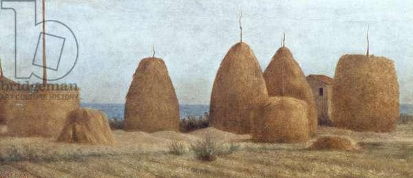 Pagliai in Castiglioncello, circa 1886, by Raphael Sernesi (1838-66), oil on panel, 20x51 cm