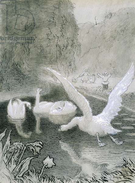 Ugly Duckling, illustration by Lorenz Frolich (1820-1908) for fairy tale by Hans Christian Andersen (1805-1875)