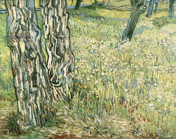 Tree trunks in grass, 1890, by Vincent van Gogh (1853-1890)