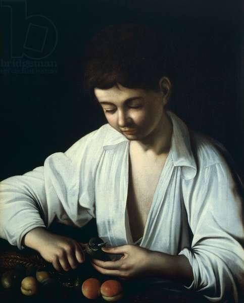 Boy Peeling Fruit, by Michelangelo Merisi, known as Caravaggio (1571-1610), oil on canvas, 755x644 cm, 1592-1593