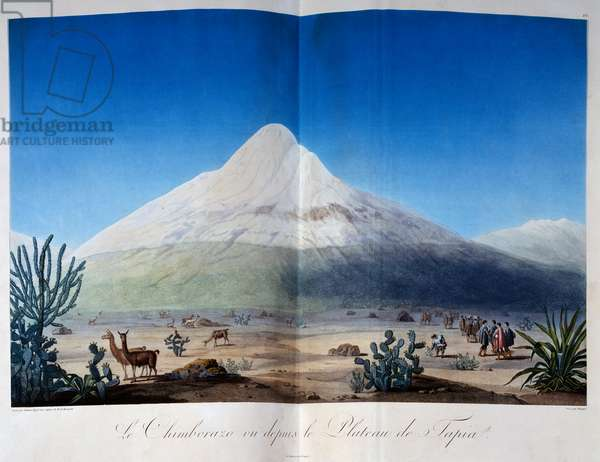 Chimborazo volcano covered with snow seen from Plateau of Tapia, illustration from Voyage of Humboldt and Bonpland, by Alexander von Humboldt (1769-1859), published in Paris, 1810, engraving, 50x66 cm Ecuador, 19th century
