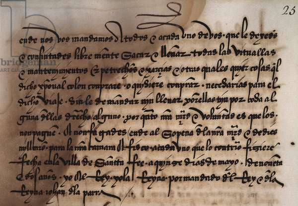 Document authorizing Admiral Christopher Columbus to collect food (second part), May 15, 1492, Santa Fe, Spain, from the manuscript El tumbo de los Reyes catolicos, 15th-16th century