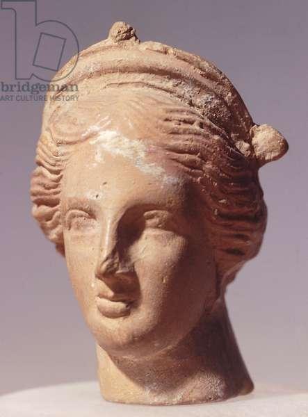 Female head, Alexandrian statue in terracotta, Greek civilization, 2nd Century BC