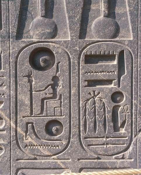 Egypt, Luxor, Karnak, Great Temple of Amon, relief of cartouche of Ramses II
