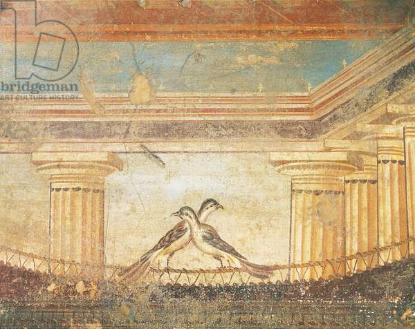Hera Sannita fresco depicting birds, House of Labyrinth, Pompeii , Campania, Roman Civilization, 1st Century