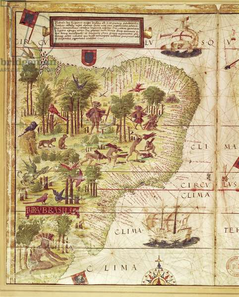 Map of Brazil, from Miller Atlas by Pedro and Jorge Reinel, Lopo Homen, cartographers and Antonio de Holanda, miniaturist, 1519