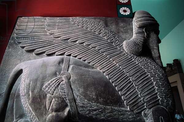 Lamassu relief from Nineveh, near Mosul, Iraq, Assyrian civilization, Detail