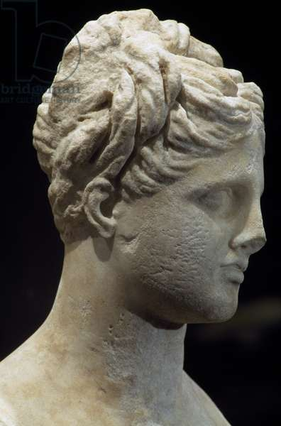 Marble head of young woman, Possibly depicting Aphrodite, Egyptian civilization, 2nd-1st century BC