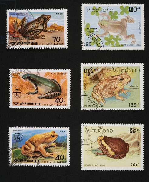 Left: Postage stamps honoring Frogs and toads, 1992, Depicting, from top to bottom, Dark-spotted frog (Rana nigromaculata), Seoul pond frog (Rana chosenica), Common toad (Bufo bufo), North Korea