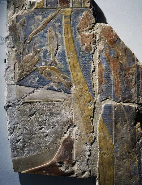 Painted limestone depicting fish from Nile, 2350 BC, Egyptian civilization, Old Kingdom, Dynasty V