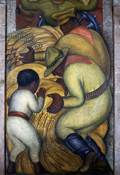 Threshing, 1928, by Diego Rivera (1886-1957), detail from the Ministry of Education frescoes (1923-1928), Mexico City. Mexico, 20th century.