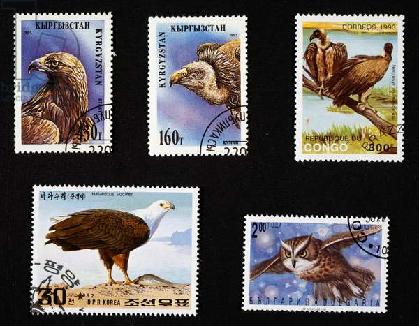 Postage stamps with birds of prey, Golden eagle and Griffon vulture, 1995, Kyrgyz Republic, Hooded vultures, 1993, Republic of Congo, African fish eagle, 1992, North Korea, European scops owl 1992, Bulgaria