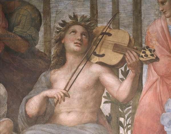Parnassus, detail of Apollo playing a viola da braccio, from the Stanza della Segnatura, 1511 (fresco)