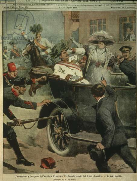Cover illustration of Assassination of Archduke Franz Ferdinand of Austria, heir to the Austro-Hungarian throne, Sarajevo