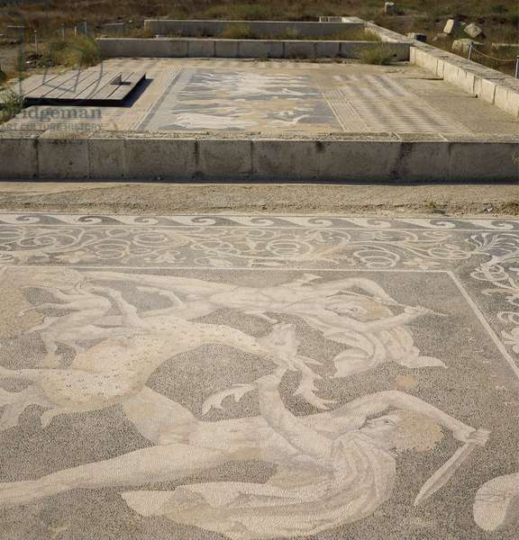 Greece, Pella, Mosaic floor showing Alexander and Hephaestion during stag hunt,4th Century BC, Ancient Greece