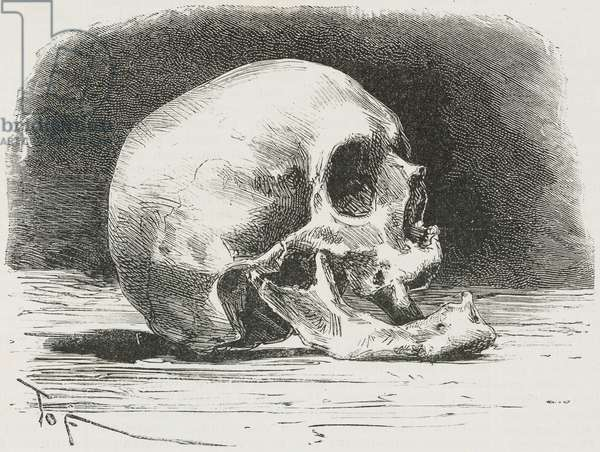 Skull of Alessandro Volta (1745-1827), Italian chemist and physicist, illustration after photo by Giulio Reina, from the magazine L'Illustrazione Universale, year 2, no 38, May 30, 1875