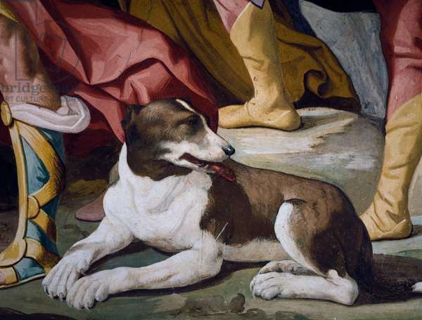 Dog, detail of fresco from cycle of Stories of Antenor, 1650, by Luca Ferrari (1605-1654), central hall of Villa Selvatico, Battaglia Terme, Veneto, Italy, 17th century