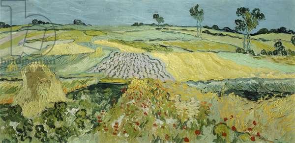 Wheatfields near Auvers-sur-Oise, 1890 (oil on canvas)