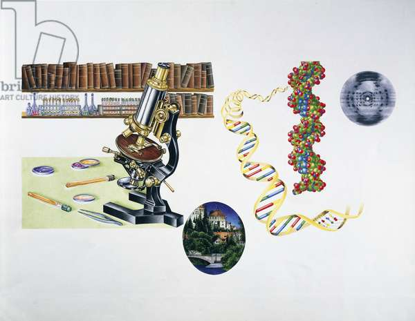 The Discovery of DNA (colour litho)