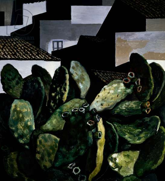 Cactus and houses, 1978