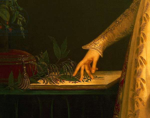 Portrait of Josephine Bonaparte, detail of 77330 (oil on canvas)