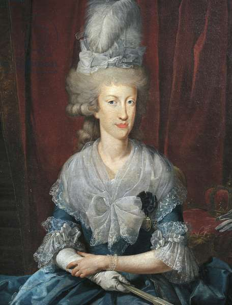 Portrait of Maria Luisa of Spain, also known as Maria Ludovica (Portici, 1745-Vienna, 1792), wife of Leopold II (1747-1792), emperor of the Holy Roman Emperor and Grand Duke of Tuscany (as Peter Leopold)