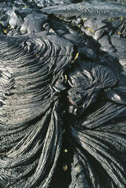 USA; Hawaii; Hawaii Volcanoes National Park; solidified lava flow (photo)