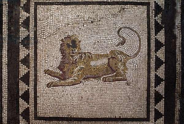 Mosaic depicting lion, panel from mosaic floor in atrium, House of Paquius Proculus or of Cuspius Pansa, Pompeii (UNESCO World Heritage List, 1997), Campania, Italy, Roman civilization, 1st century AD