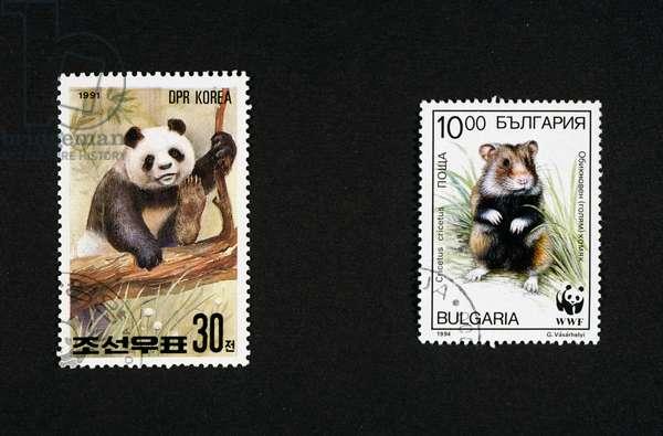 Postage stamps honoring wild animals: left, postage stamp depicting panda, 1991, North Korea, right, postage stamp depicting hamster, 1994, Bulgaria, North Korea and Bulgaria, 20th century