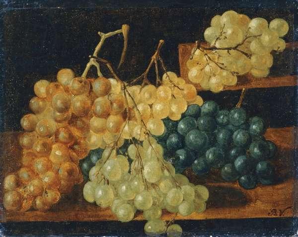 Grapes, by Baldassarre Verrazzi (1819-1886), oil on cardboard, 25x32 cm