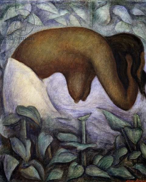 Bather of Tehuantepec, 1923, by Diego Rivera (1886-1957), oil on canvas. Mexico, 20th century.