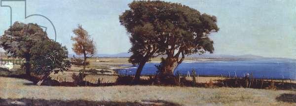 Marina in Castiglioncello, by Raffaello Sernesi (1838-1866).