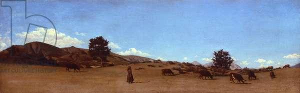 High pastures, by Raffaello Sernesi (1838-1866).