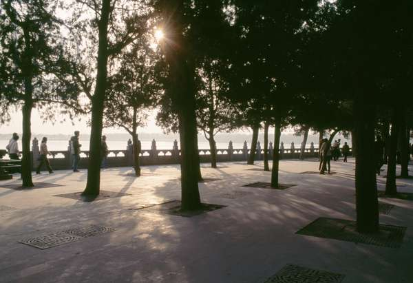 Trees on  bank of Kunming lake, Summer palace (Unesco World Heritage List, 1998), Beijing, China, 19th century (photo)