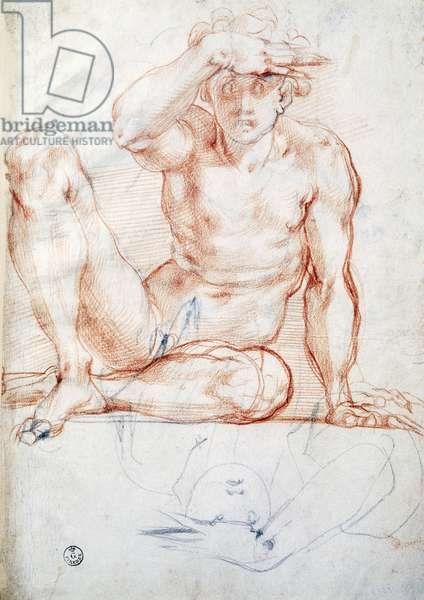 Seated male nude seen from the front, by Jacopo Carucci known as Pontormo (1494-1557), drawing.