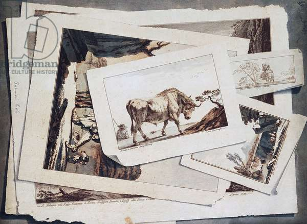 Study of drawings and prints, trompe l'oeil, by Pietro Giacomo Palmieri