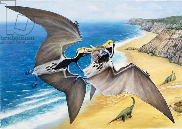 Two Pterosaurs (Pterosauria) with a prey, Triassic-Cretaceous. Illustration (photo)