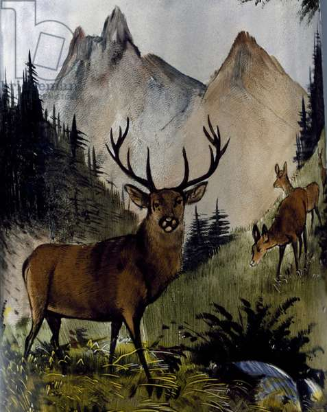 Deer in meadow, detail from glass and clear enamel mug, Austria, 19th-20th century
