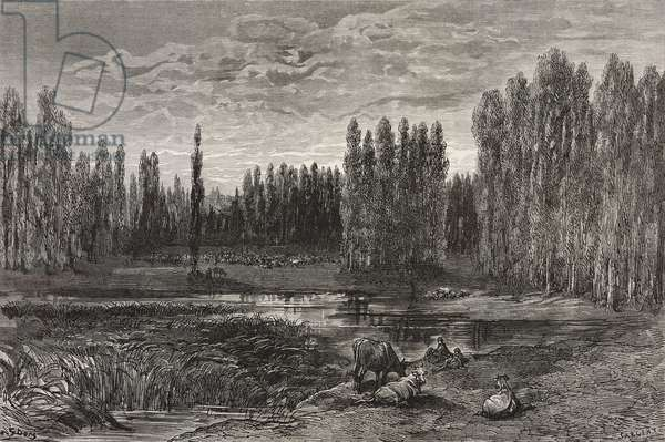 Pond between poplar trees near Leon, drawing by Gustave Dore (1832-1883) from Travels in Spain by Gustave Dore and Charles Davillier (1823-1883)