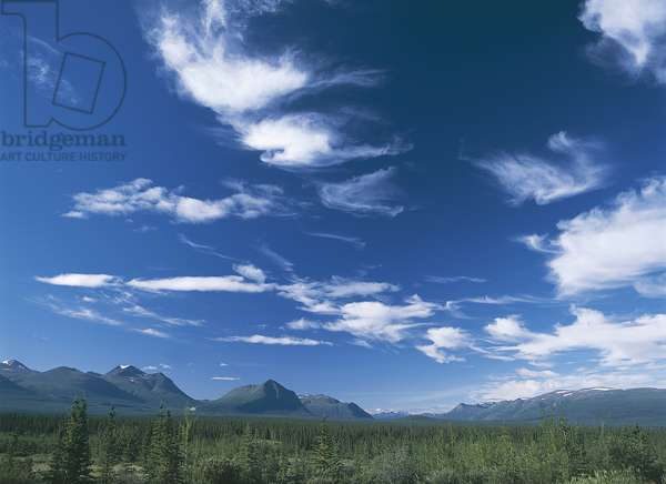 USA; Alaska; Dalton Highway; landscape of mountains and forest (photo)