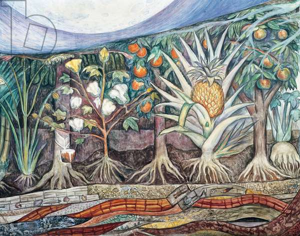The cultivated flora, detail from Man at the crossroads, looking with hope and high vision to a new and better future, by Diego Rivera (1886-1957), fresco from the Palace of Fine Arts, Mexico City. Mexico, 20th century.
