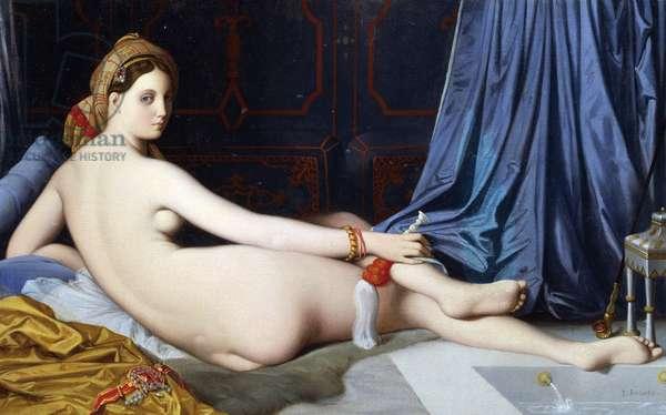 The Grande Odalisque (oil on canvas)