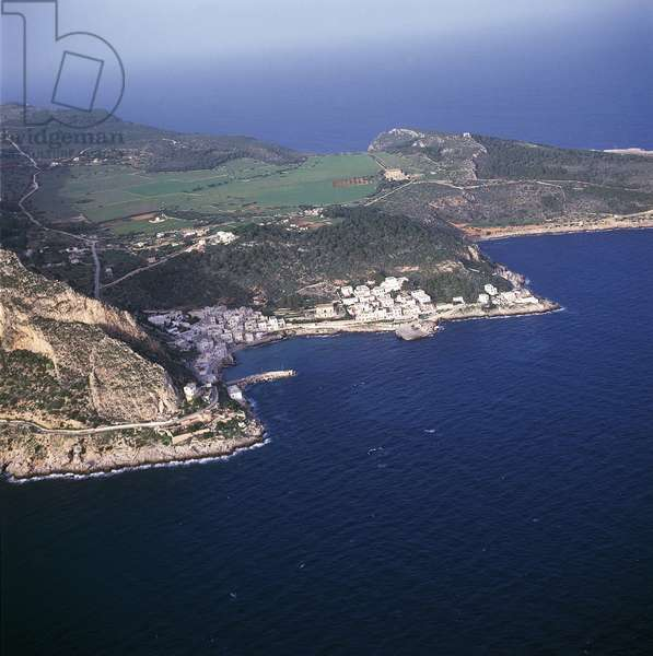 Aerial view of island in the sea, Levanzo Island, Egadi Islands, Sicily, Italy (photo)
