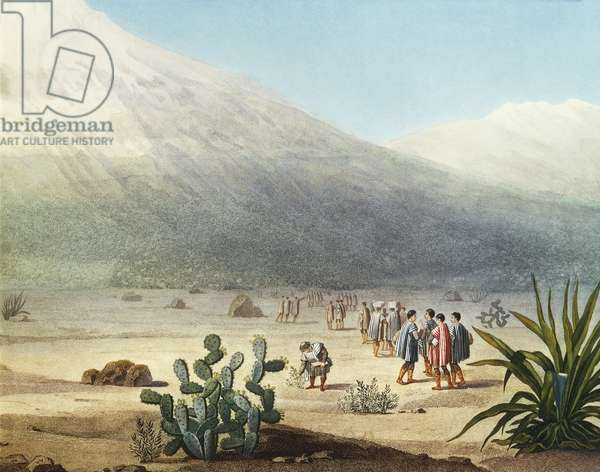Tapia plain at foot of Chimborazo volcano, Ecuador, engraving from Views of cordilleras and monuments of indigenous peoples of Americas by Alexander von Humboldt (1769-1859), Paris, 1810, Detail, South America, 19th century