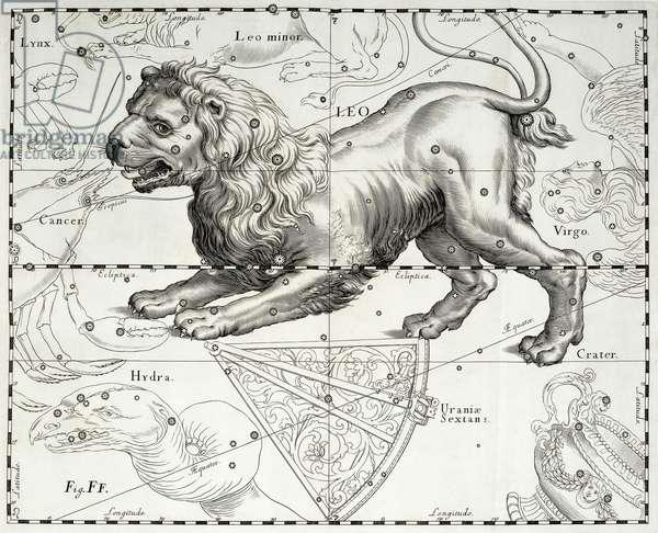 Leo, zodiacal constellation of Lion, illustration taken from Johann Hevelius's (1611-1687) star atlas Firmamentum Sobiescianum sive Uranographia, Gdansk, 1690