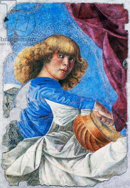Angel playing lute,1480, Fresco by Melozzo da Forli (1438-1494), Detached fresco from Ascension of Christ fresco, Italy, 15th century
