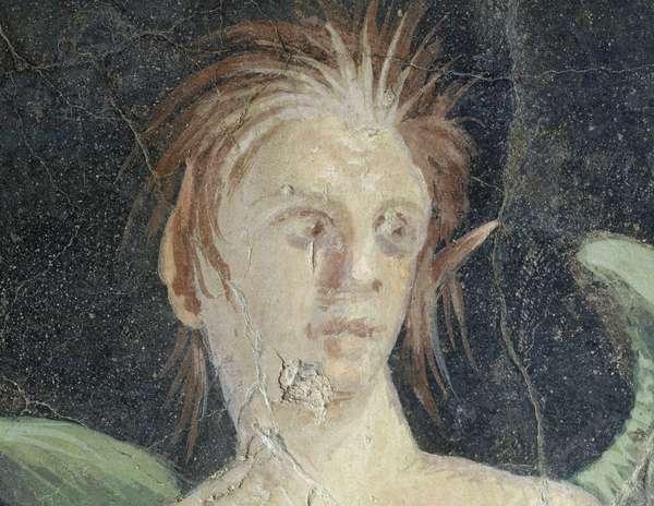 Winged genius, fragment of fresco from Villa of Publius Fannius Synistor, Boscoreale, Campania, Italy, Detail, Roman civilization, 1st century BC