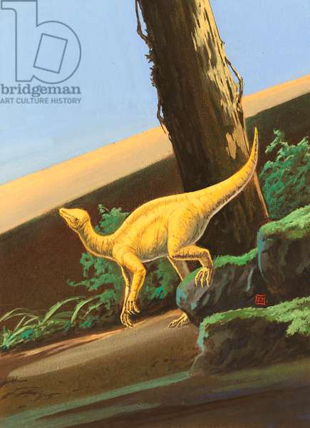 Mussaurus patagonicus, Late Triassic. Artwork by J Dang (photo)